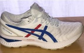 Asics Nimbus 22-最坚实的日常训练鞋