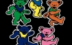 "Grateful Dead x 耐克 Nike SB Dunk Low"" Orange Bear""的官方照片"