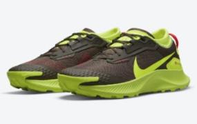 Nike Pegasus Trail 3 Gore-Tex 出现在棕色和伏特