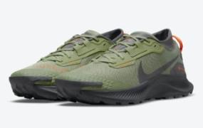 Nike Pegasus Trail 3 Gore-Tex 出现在飞行夹克颜色中