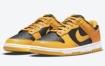 "Nike Dunk Low ""Goldenrod"" 官方照片"